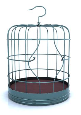 Bird Cage 600x400