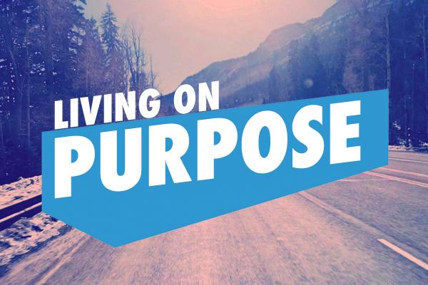 Purpose title 600x400