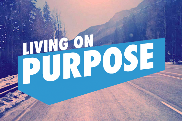 purpose driven life for youth pdf